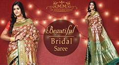 Charismatic Beauty Of Bridal Sarees