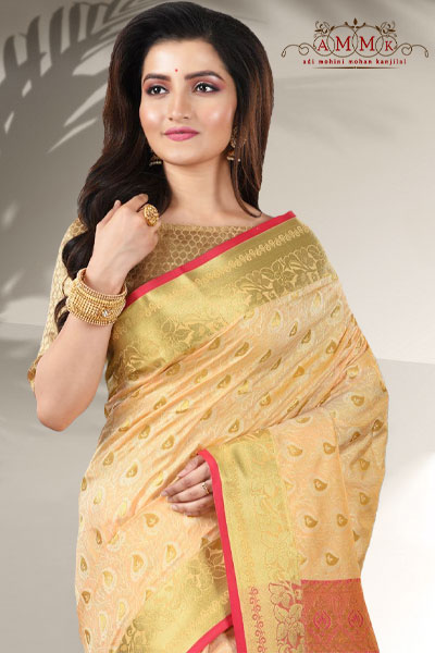 Beige Color Arni Silk